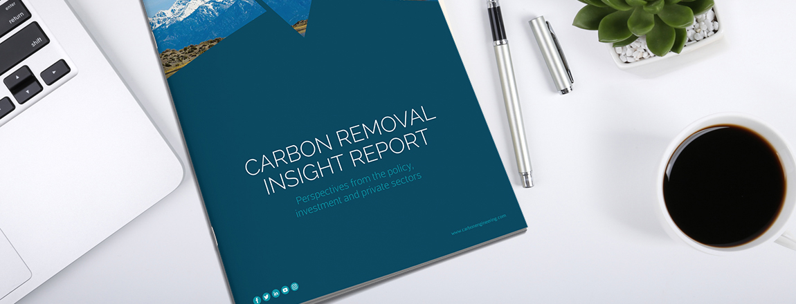 Carbon Removal Insight Report: Policy, Investment and Private Sector Perspectives